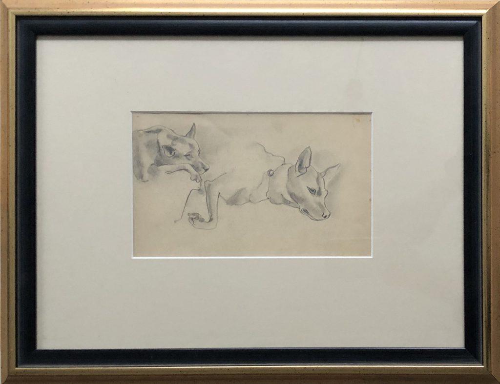 Hondenstudie, potlood, 13,5 x 22 cm
